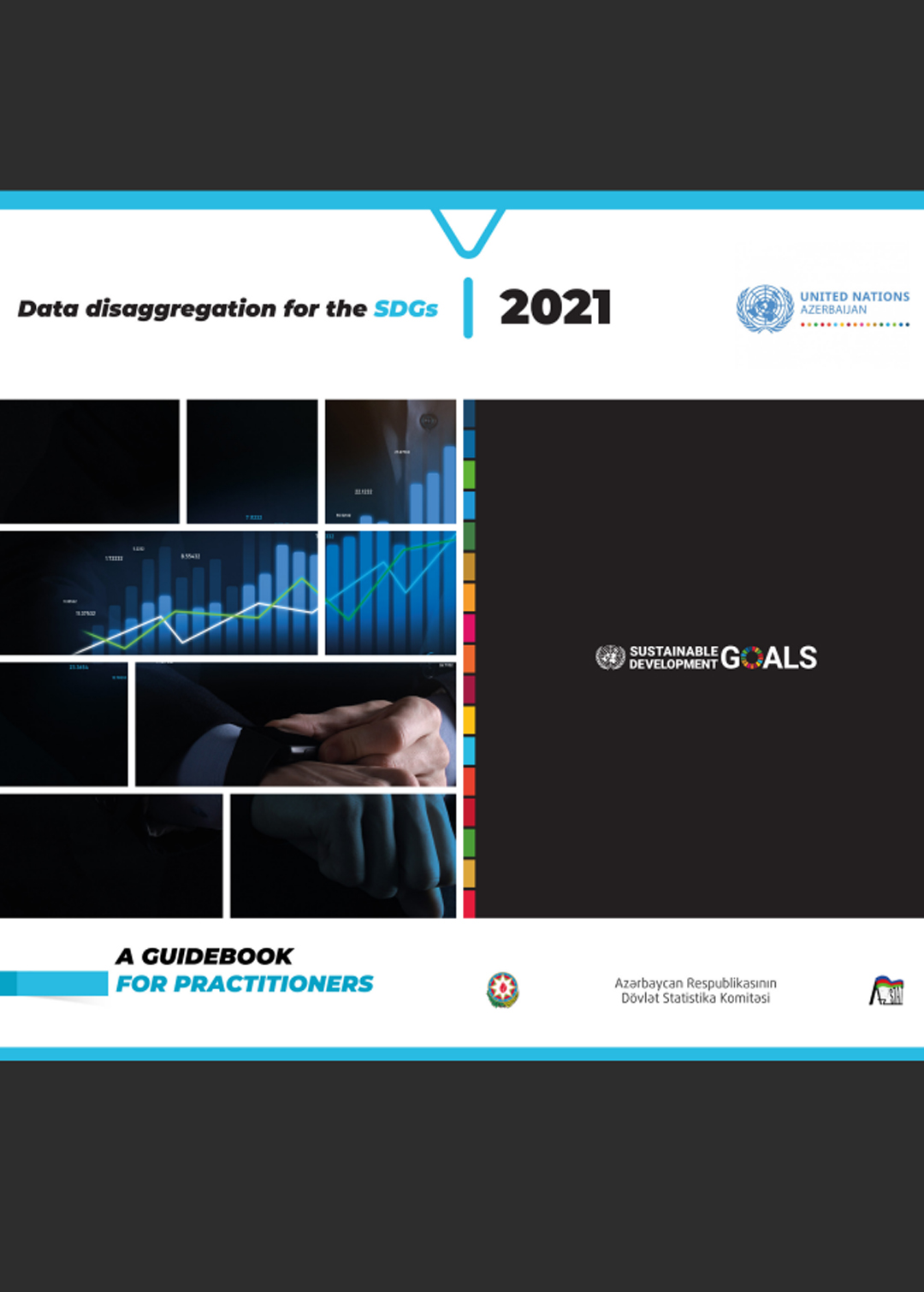 Data disaggregation for the SDGs